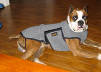 dog-coat-revised