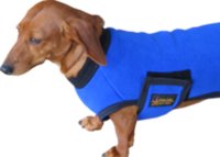 dog-coat_medium-revisedB